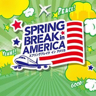 スピリングブレイク イン アメリカ