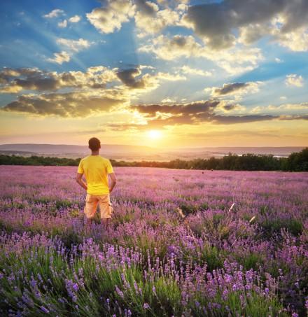 Man in meadow of lavender. Emotional scene.